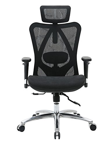 Sihoo Ergonomic Office Chair, Computer Chair Desk Chair Breathable High Back Chair, Skin Friendly Mesh Chair 3D Adjustable Armrest and Lumbar Support (Black)